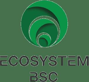 Logo - Ecosystem BSC